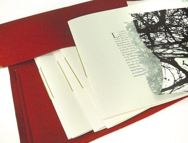 Libros para regalar a hombre - mujer - amigo - amiga. Los mejores libros de regalo.
